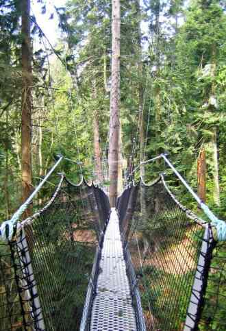 Take an exciting walk in the trees with your family at UBC's Greenheart Canopy Walkway, at UBC Botanical Garden. (via thetravellingmom.ca)
