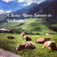 Everyone knows and loves Switzerland in winter. These 7 tips to enjoy summer in the Swiss Alps in Adelboden will have you yodeling a new tune on your alpine travels | thetravellingmom.ca