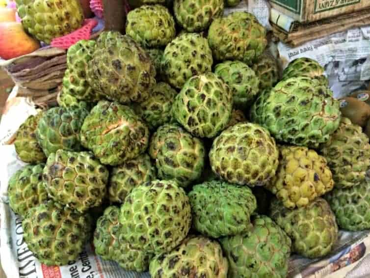 Discovering the tasty delights of cherimoya in India (via thetravellingmom.ca)