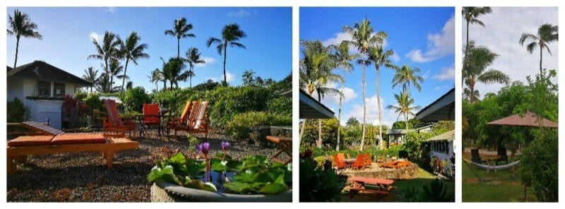 Aloha! The Garden Island of Kauai is perfect for a tropical family holiday. Stay off the beaten path and enjoy paradise at the Fern Grotto Inn in Wailua.