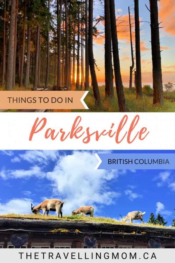 things to do in parksville with kids