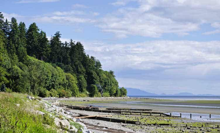things to do in surrey british columbia