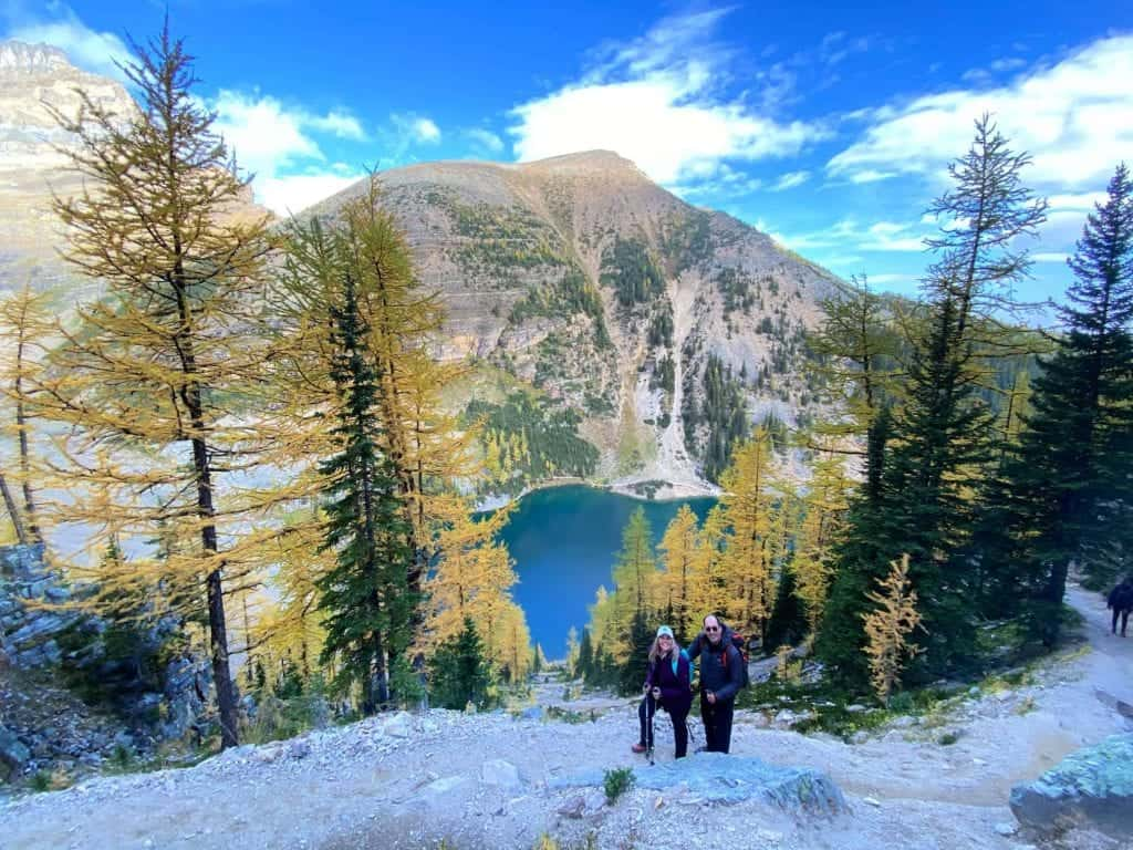 couple on hike amid larches in banff